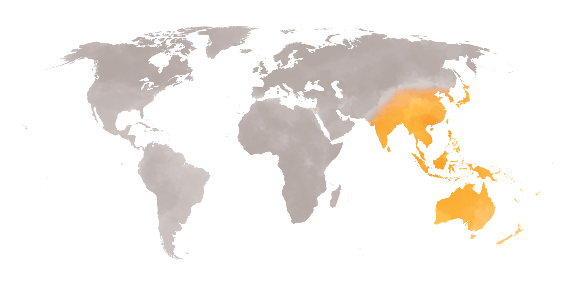 Asian Spice Map