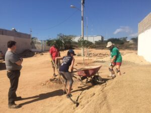 International Work Projects, International Work Projects 2019 & 2020