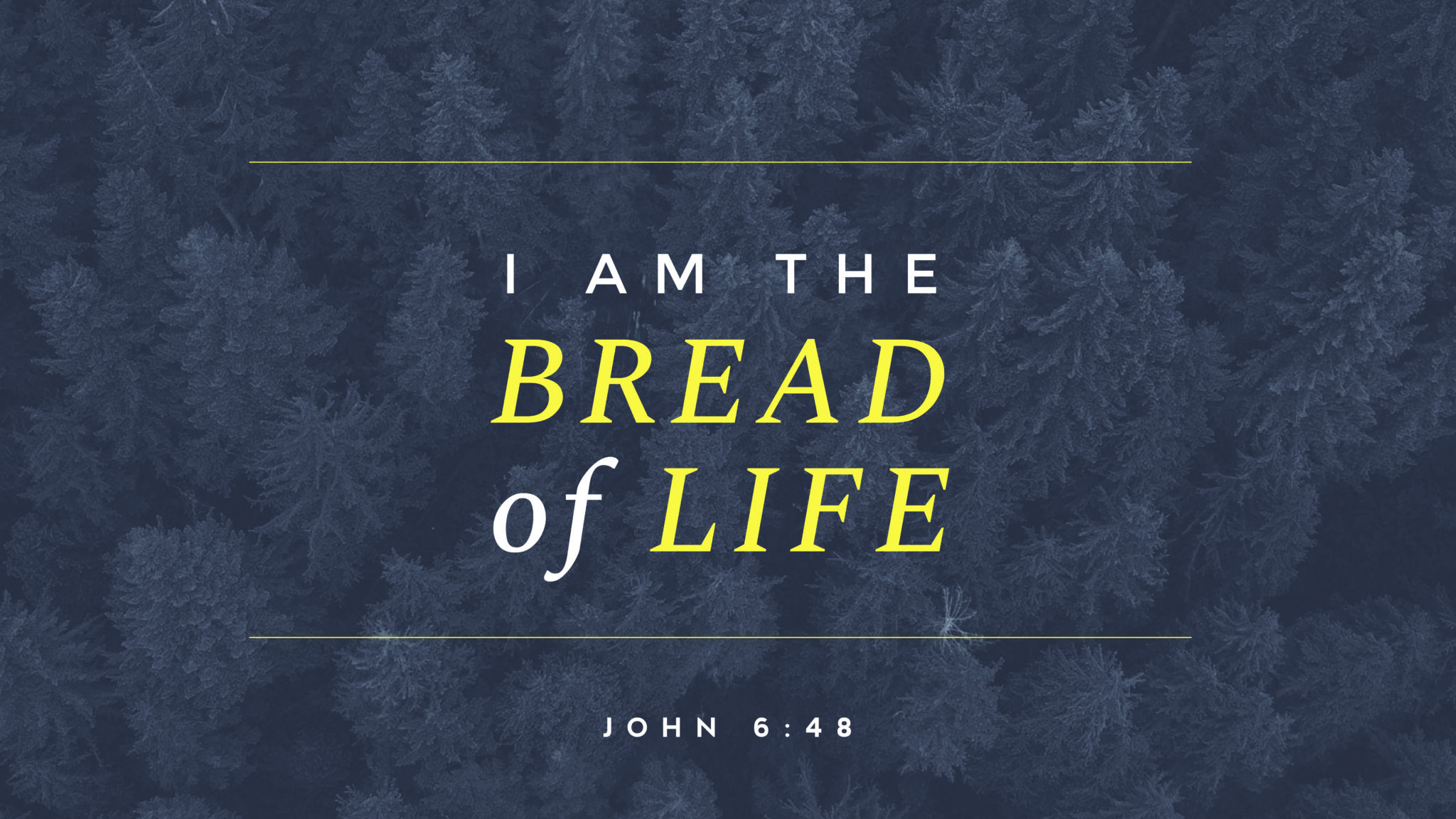 """Featured image for """"John 6: 25-59"""""""