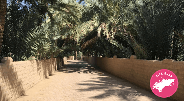 A picture of a dirt road with brick walls and palm trees at the sides.