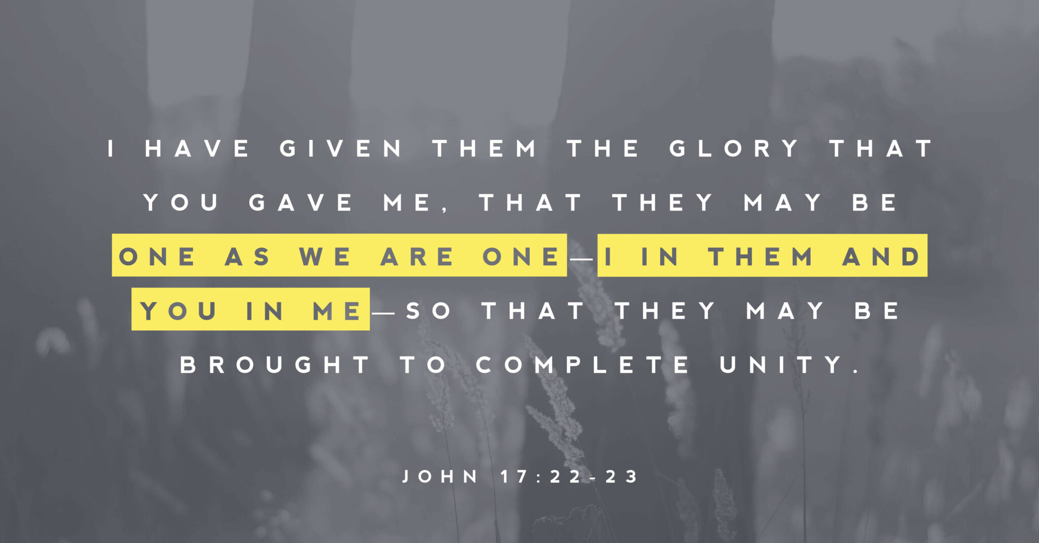 """A picture of wheat with words that read """"I have given them the glory that you gave me. That they may be one as we are one-I in them and you in me-so that they may be brought to complete unity"""" (John 17:22-23)."""
