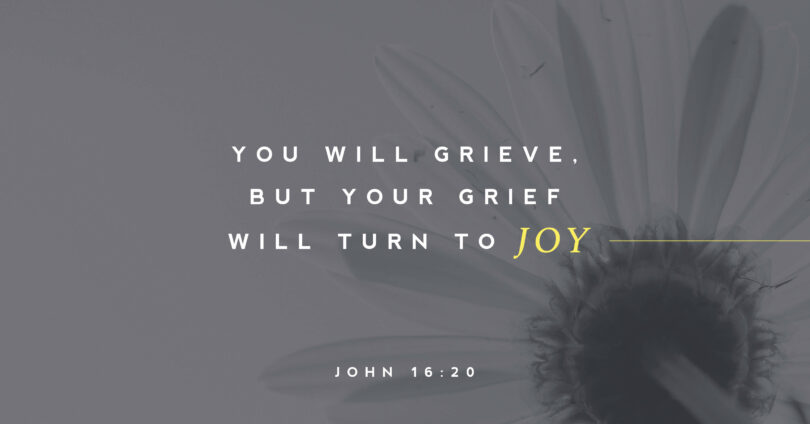 "A picture of a daisy with text overtop that reads ""You will grive, but your grief will turn to joy"" (John 16:20)."