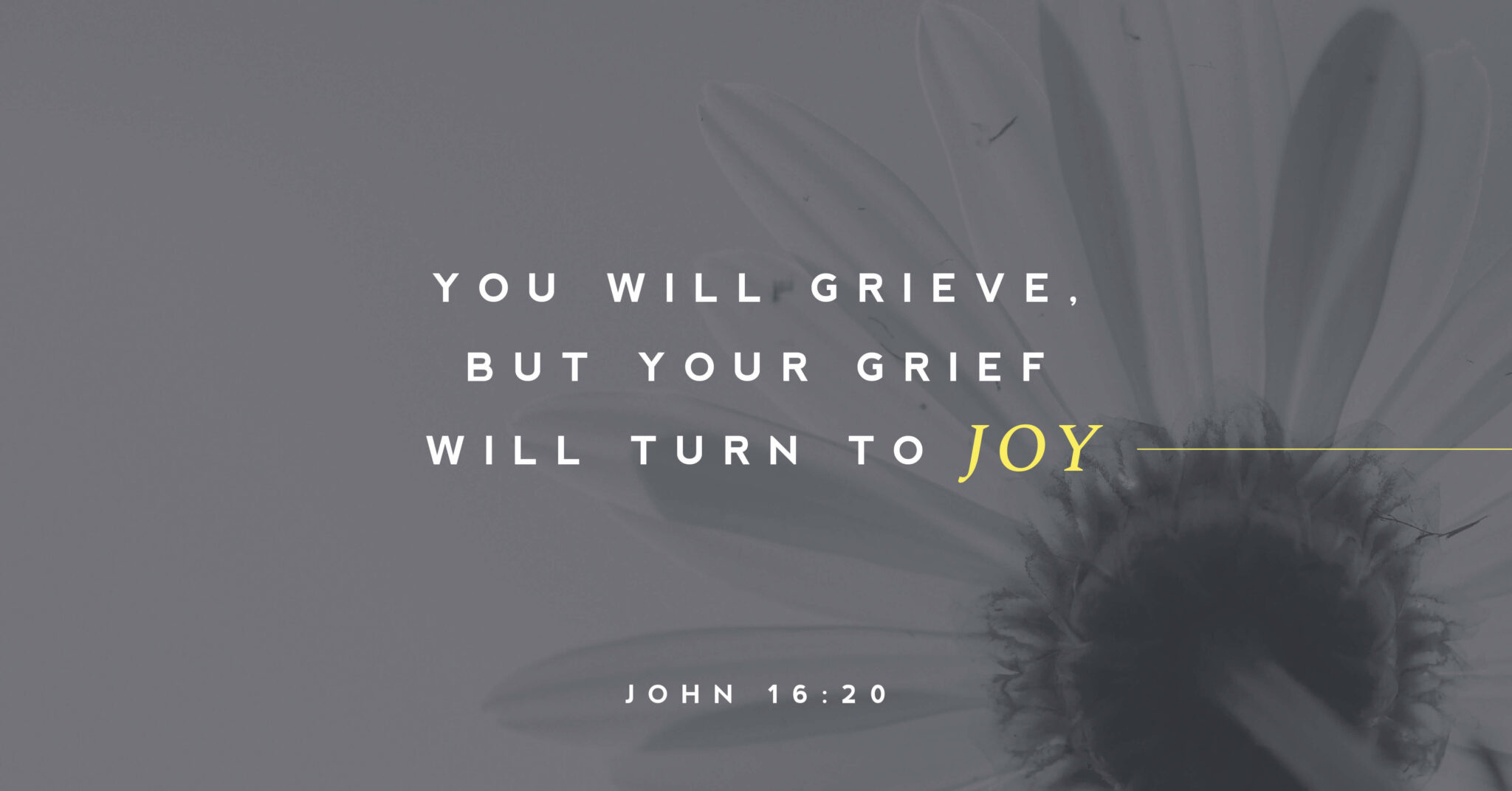 """Featured image for """"John 16: 16-33"""""""