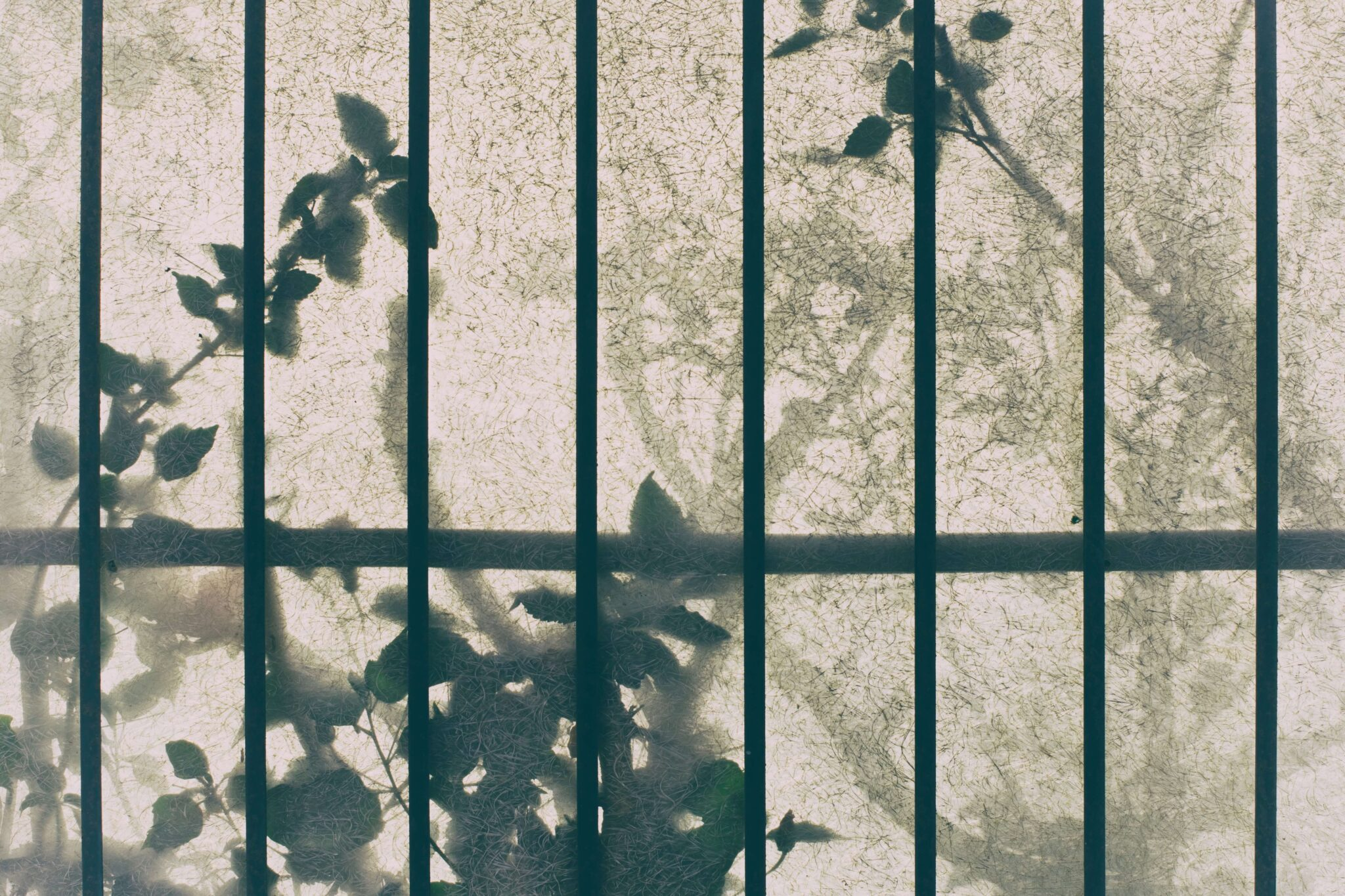 """Featured image for """"Joy Awaits Behind Bars"""""""