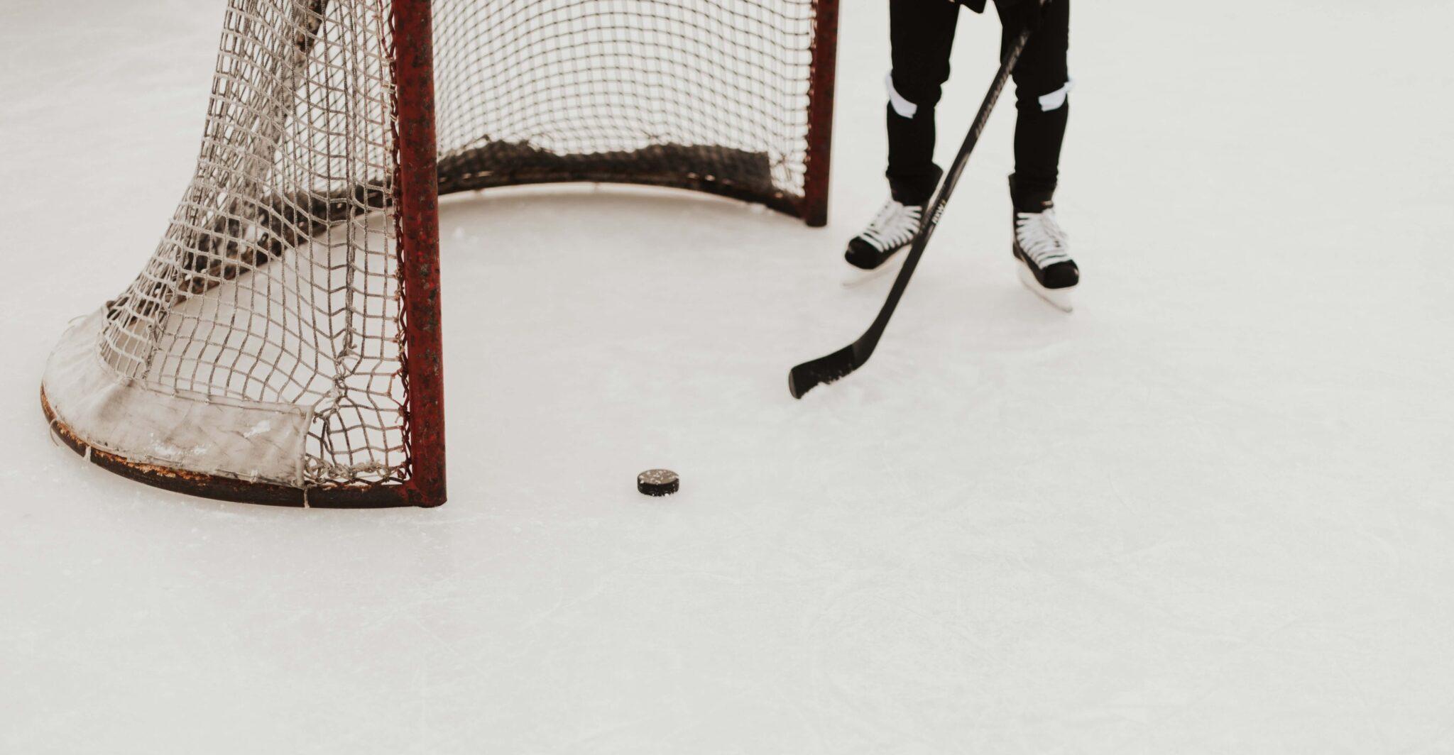 Hockey net and skater